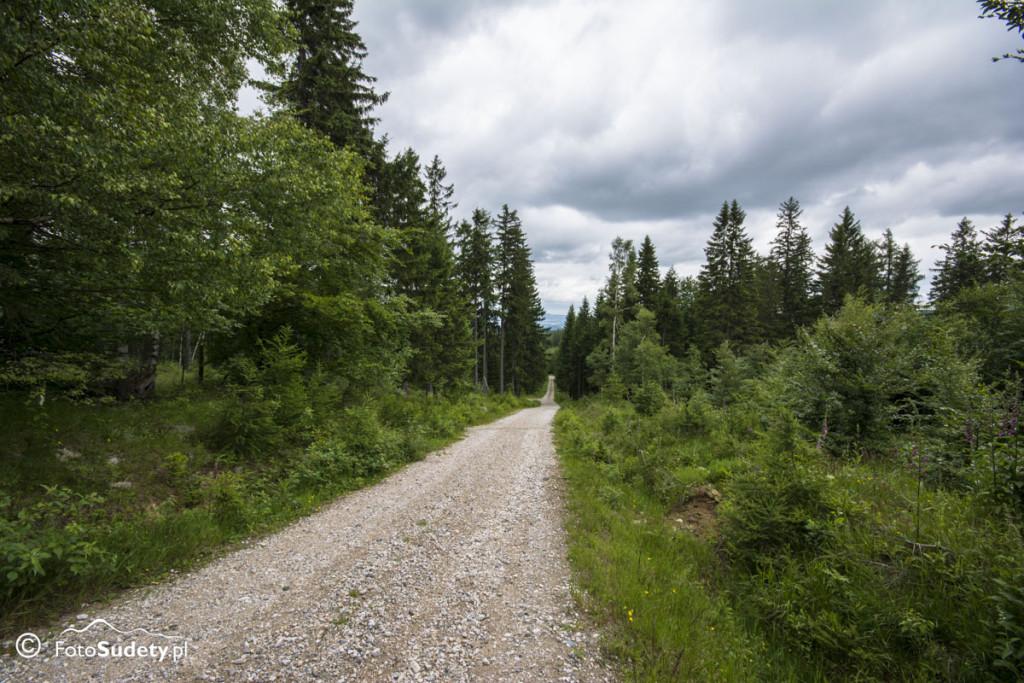 Karkonosze: Droga Chomontowa, Zamkowe Skały, Jeleniec