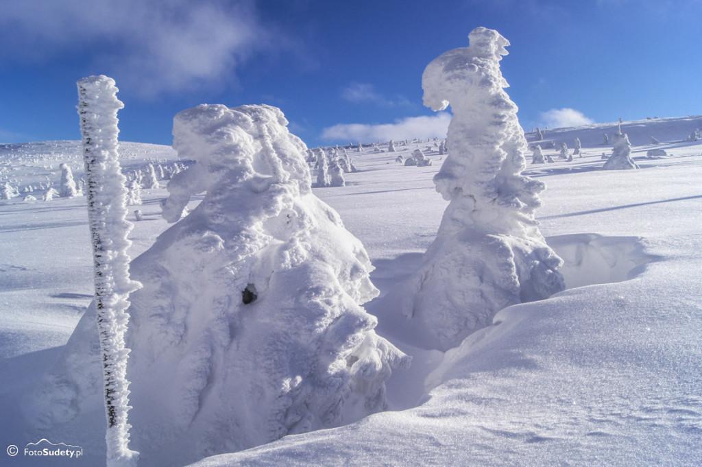 Karkonosze – zima w okolicach Szrenicy