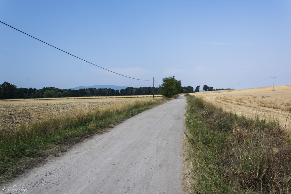 066 polna droga Trzeboszowice - Ujeździec