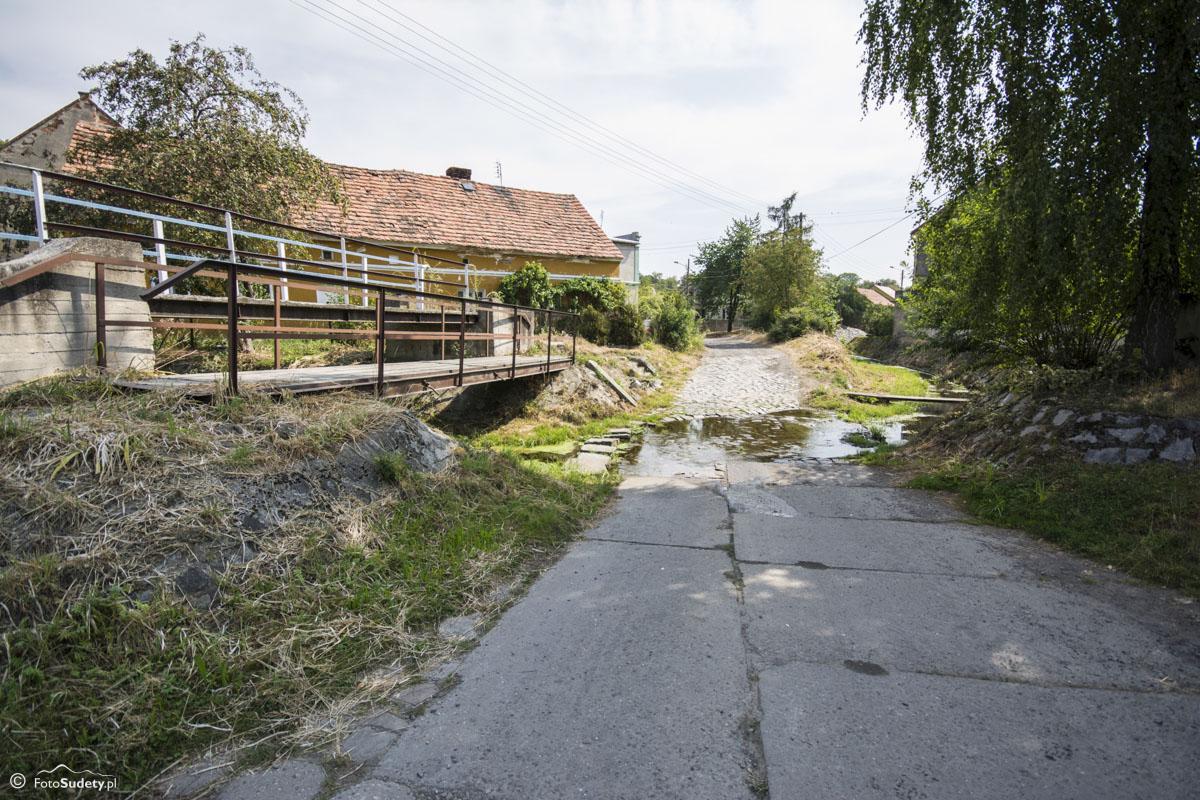 071 Czerwony Potok na skraju Ujeźdźca