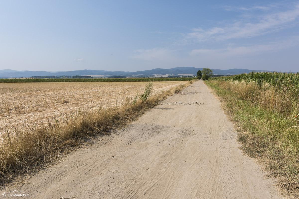 072 droga Ujeździec - Lisie Kąty