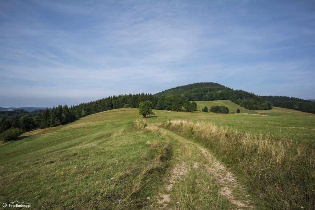 Główny Szlak Sudecki – Etap IV (Długopole-Zdrój – Kudowa-Zdrój)