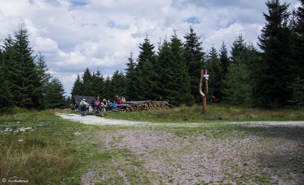 096 Przełęcz Żmijowa Polana