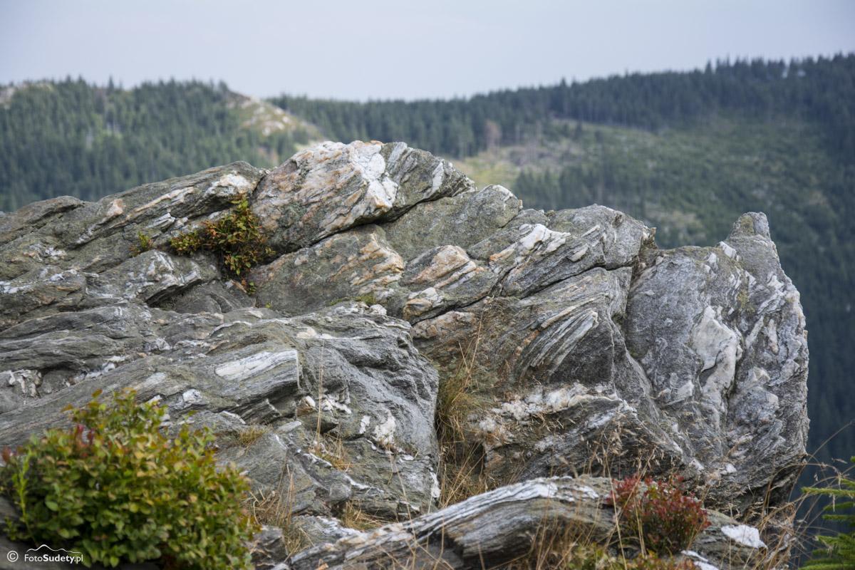 106 skały na Żmijowcu