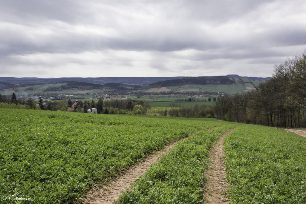 Główny Szlak Sudecki – Etap VI (Ścinawka Średnia – Słupiec)