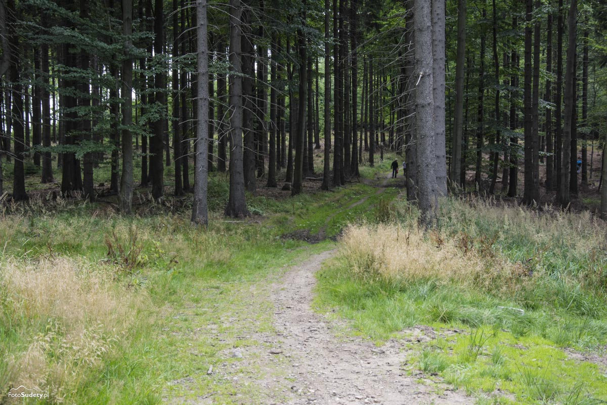 004-przed-wigancicka-polana