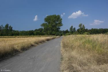 009 Szlak po wyjściu z Bodzanowa