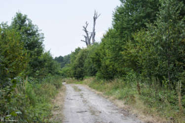 027 na szlaku do Sławniowic
