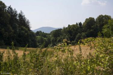 029 widok ze szlaku przed Sławniowicami
