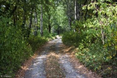 030 ścieżka w pobliżu kamieniołomów