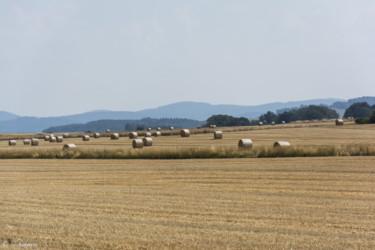 041 Rychlebske Hory