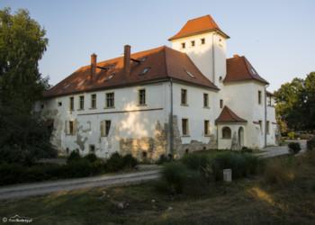 055 Pałac w Piotrowicach Nyskich