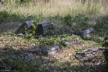 086 Stary cmentarz w Paczkowie