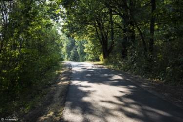112 Droga z Kozielna do Błotnicy