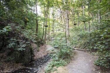 129 Leśny Park Przygody SKALISKO