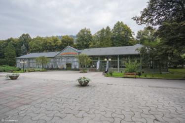 001 Park Zdrojowy w Długopolu-Zdroju
