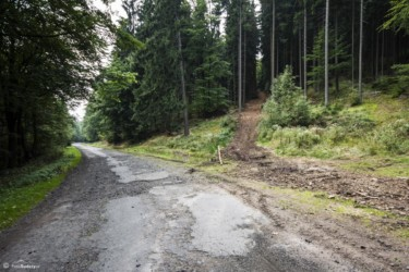 008 Autostrada Sudecka - po prawej ścieżka w kierunku Jagodnej
