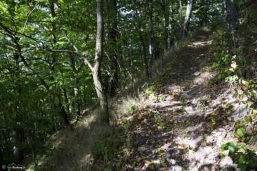 073 Wejście na szczyt Gomoły