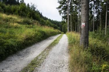 075 Szlak w kierunku Przełęczy Pod Chłopkiem