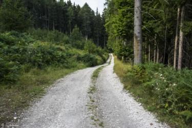 076 Szlak w okolicy góry Chłopek