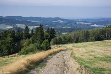 082 szlak w pobliżu Kulina Kłodzkiego