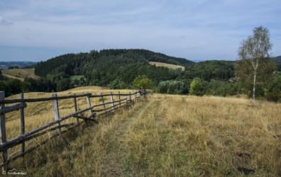 089 zejście do Dańczowa