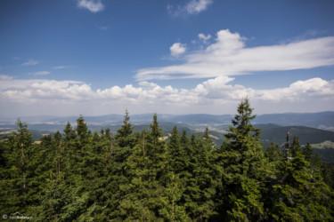 090 Widok z wieży na Czarnej Górze