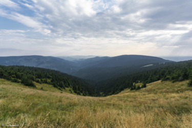 121 Głęboka Dolina Moravy