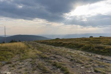 122 zejście zielonym szlakiem ze szczytu Śnieżnika