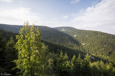 128 Widok z Kozich Skał na Mały Śnieżnik i dolinę Czarnej