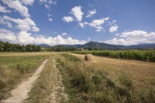 157 Igliczna - widok ze szlaku do Wilkanowa