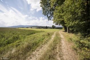 160 Szlak w pobliżu Długopola-Zdroju