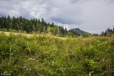 001 Sokolik - widok z okolic Karpnickiej Przełęczy