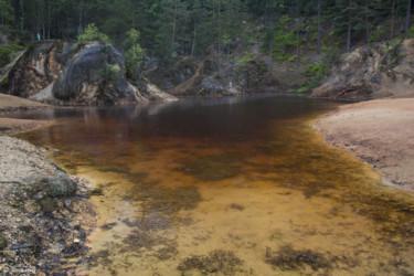 019 Purpurowe Jeziorko