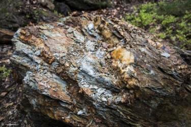 029 Pirytonośna skała