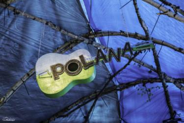 Polana 2016 1-1