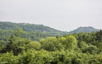 018-widok-w-kierunku-fortow-srebrnogorskich