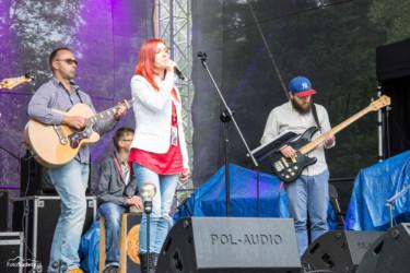 Gitara i...Borowice 2017 dzień 1-15