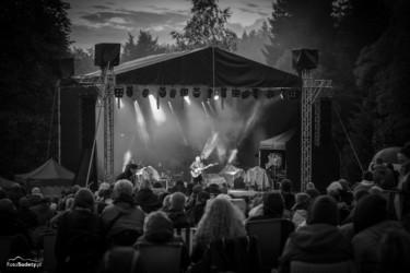 Gitara i...Borowice 2017 dzień 1-71