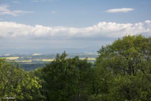 Wieża widokowa Gromnik-016