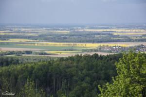 Wieża widokowa Gromnik-020