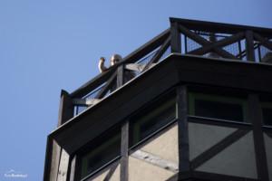 Wieża widokowa Gromnik-026