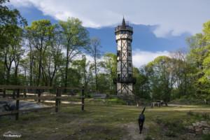 Wieża widokowa Gromnik-027