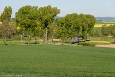 Wzgórze Ernesta-3